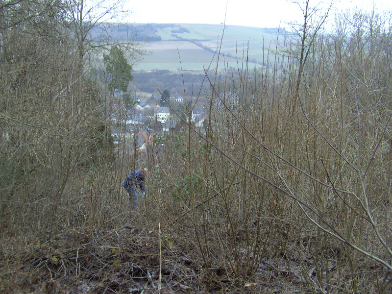 Blick vom Geider Berg auf das Dorf, Winter 2009