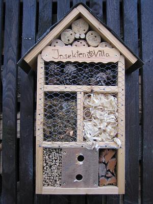 InsektenVilla2